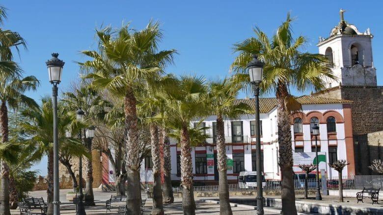 Kleiner Palmengarten auf dem Burgberg