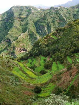 Wandern im Anaga Gebirge
