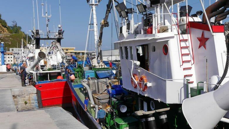 Fischerboote im Hafen von Getaria