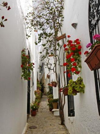 Mit Blumen geschmückte schmale Gasse in Mojácar