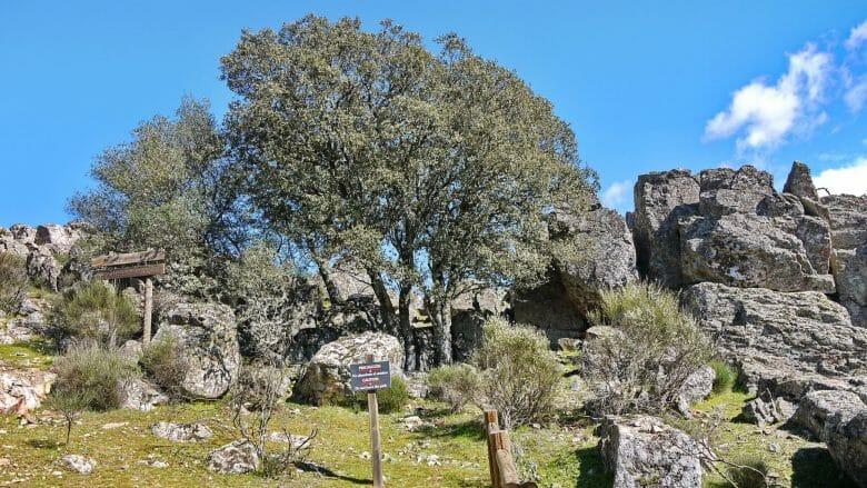 Auf dem Weg zum Castillo de Monfragüe
