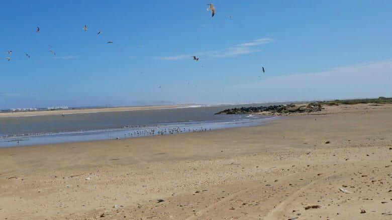 Playa de Nueva Umbría an der Costa de la Luz in der Provinz Huelva