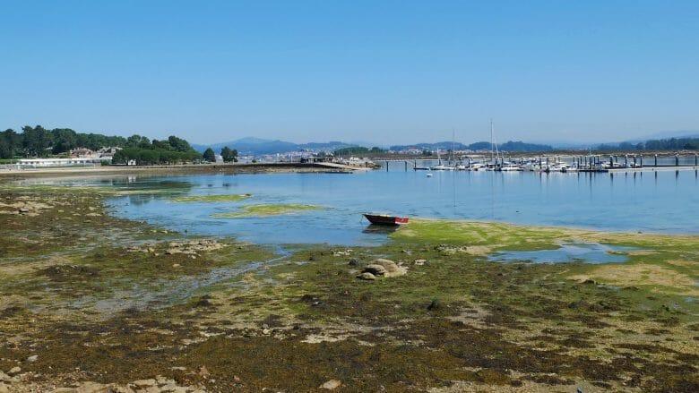 Die Küste vor der Insel A Toxa