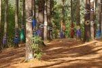 Bosque Pintado (Baskenland)