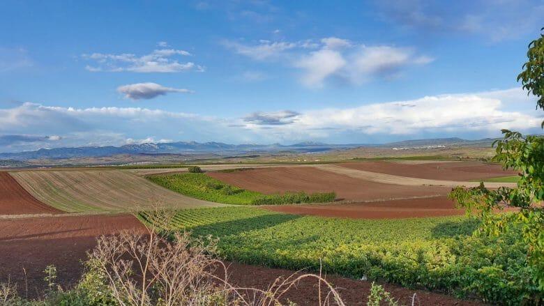 Landschaft der Rioja