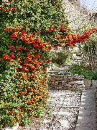 Garten der Dichter