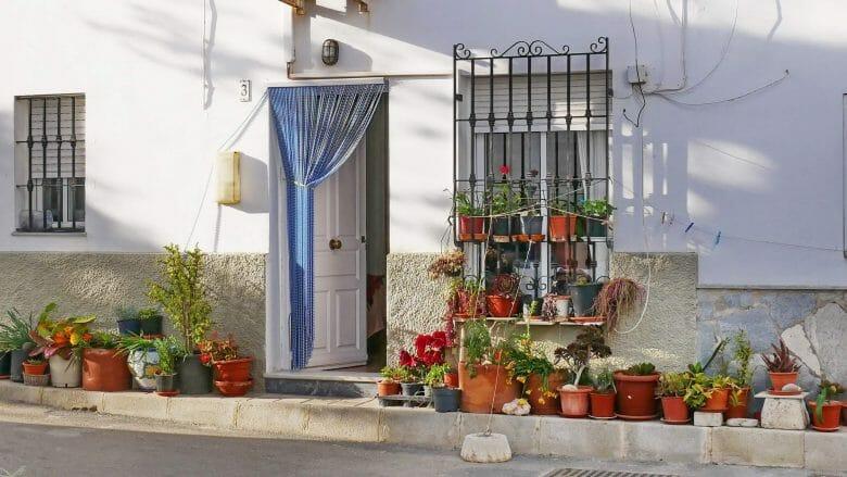 Blumen vor der Haustür